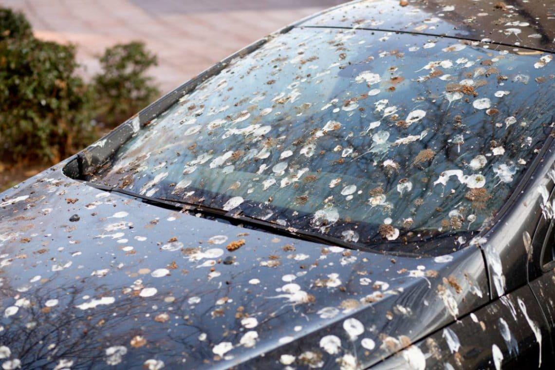 Une voiture qui est sale car elle n'a pas de housse